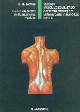Netter Sistema musculosqueletico. Anatomia, fisiologia y enfermedades metabolicas.