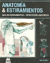 Anatomia & Estiramientos