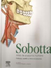 Sobotta Atlas de Anatomía Humana Cabeza, Cuello y Neuroanatomía