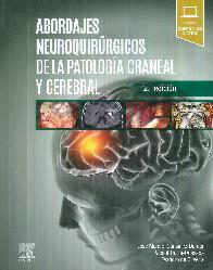 Abordajes neuroquirúrgicos de la patologíá craneal y cerebral