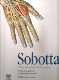 Sobotta Atlas de anatomía humana