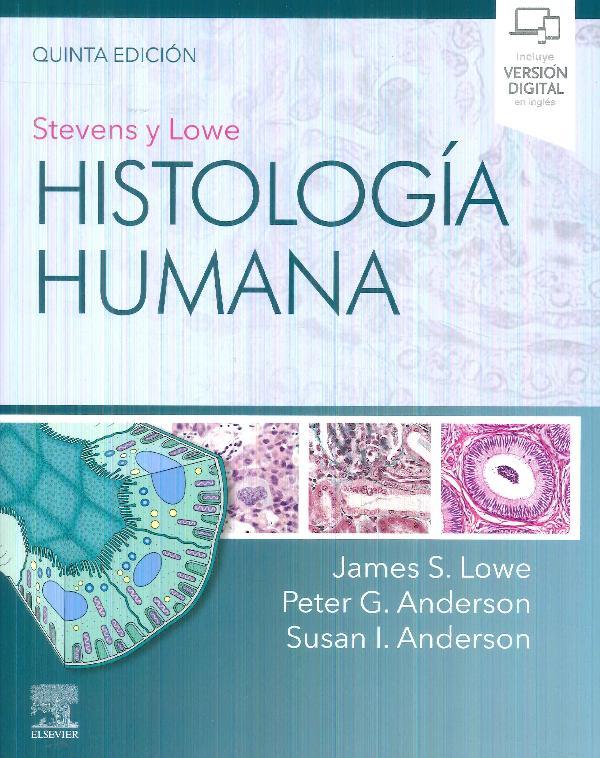Histología humana Stevens y Lowe