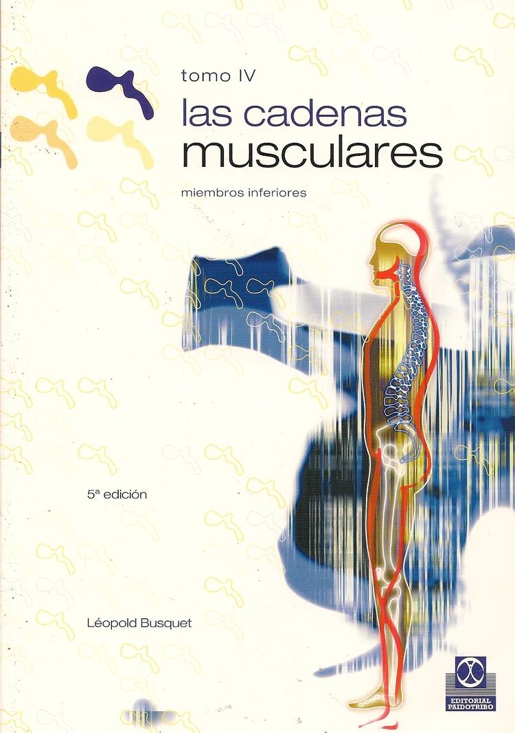 Las cadenas musculares IV
